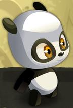 Kleiner Pandawa