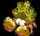 Crustocana Morrito