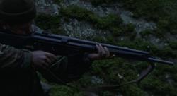 HK41 cropped
