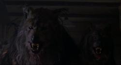 Werewolves after Megan is shot