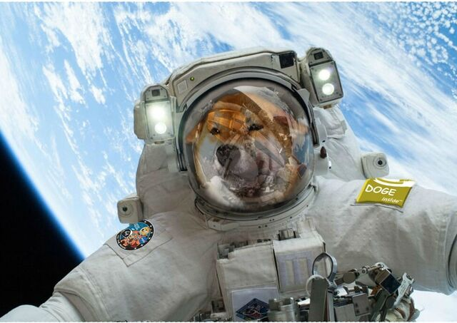 File:A touchup astrodoge.jpg