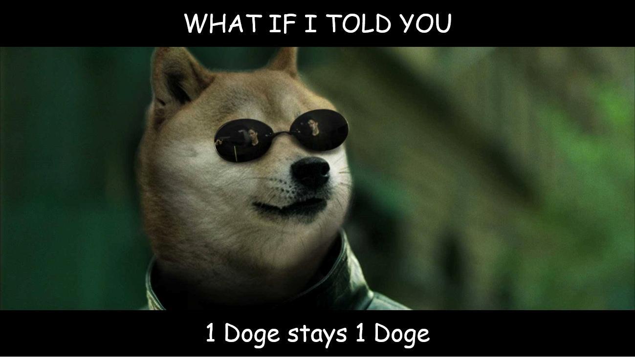 1 doge 1 doge dogecoin wiki fandom powered by wikia