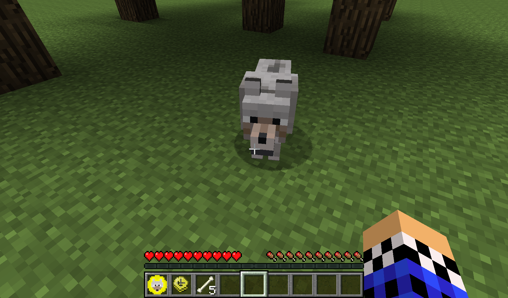 How to tame a dog in Maincrafter, and what is needed for this