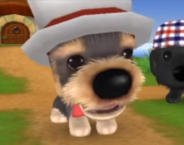 Peter The Dog Island Wiki Fandom