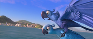 Blu taking flight in yeah uh huh