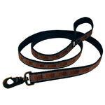 Pet leash