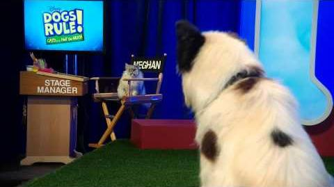 Awesome Dog Athletes - Dogs Rule! Cats...Not So Much - Disney Channel Official-2