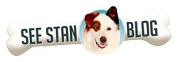 See Stan Blog