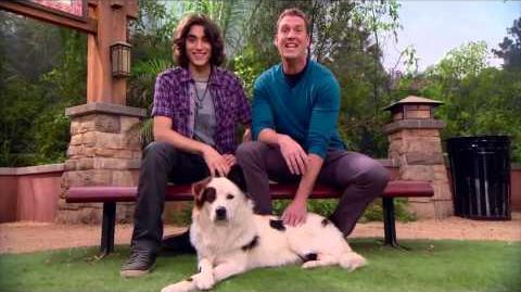 """Blake Michael and Regan Burns """"Dog With a Blog"""" Host Give Props to Pets Marathon"""