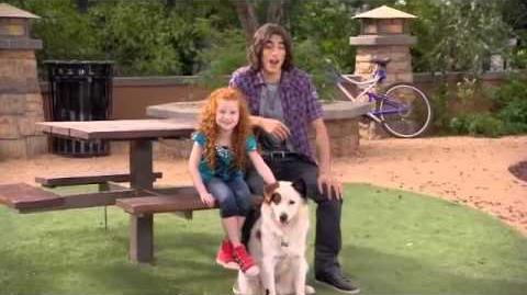 EXCLUSVE Give Props to Pets Marathon - Blake & Francesca Intro!