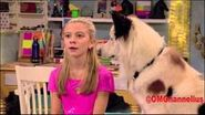 Dog With A Blog Avery s First Crush clip 95013820 thumbnail