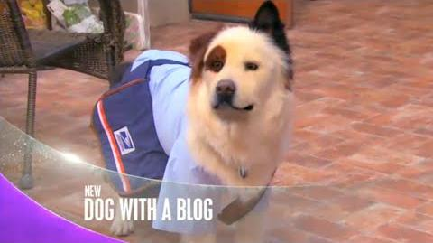"""Dog With a Blog - """"Avery Makes Over Max"""" Promo"""