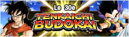 TenkaichiBudokai30