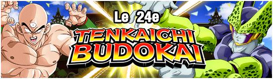 TenkaichiBudokai24