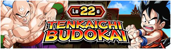 TenkaichiBudokai22