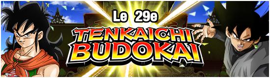 TenkaichiBudokai29