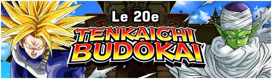 TenkaichiBudokai20