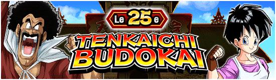 TenkaichiBudokai25