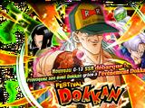 Invocation rare: C-13 Festival Dokkan