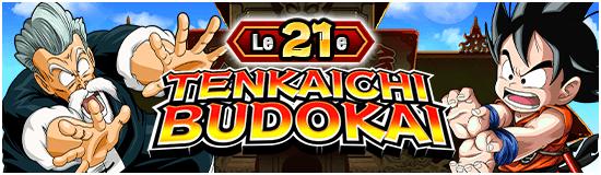TenkaichiBudokai21
