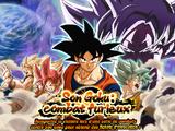 Son Goku : combat furieux