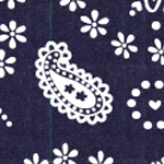 File:Sunny Side Up's Pattern.jpg