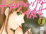 Domestic Girlfriend (manga)
