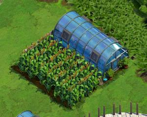 Farm Level 18