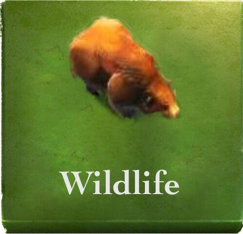 File:MP-Wildlife.jpg