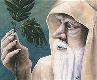 Ley-Druid