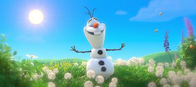 Olaf 6