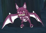 Male Vampire Bat