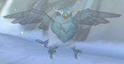 Male Blizzard Bird