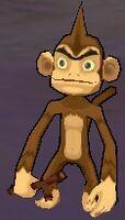 Branch Monkey