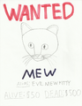 Mew wanted poster