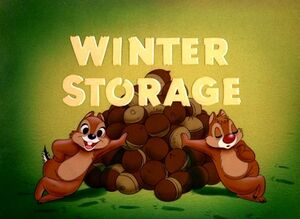 D winter storage