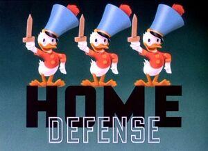 D home defense
