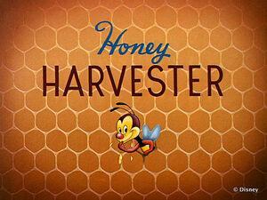D honey harvester