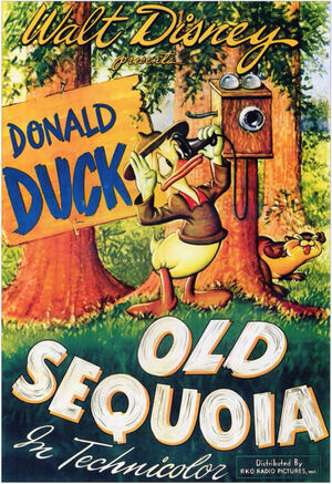 D old sequoia poster