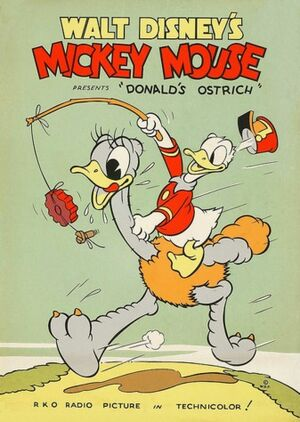 D ostrich poster