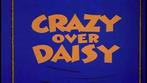 D crazy over daisy