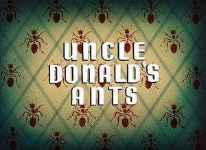 D ants