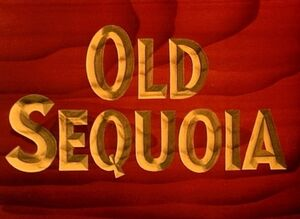 D old sequoia