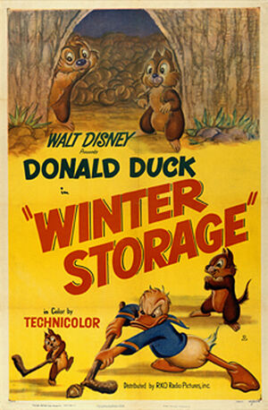 D winter storage poster