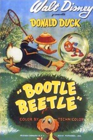 D bootle beetle poster