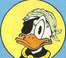 Sortebill Duck