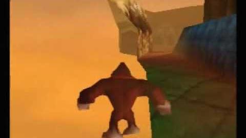 Several Donkey Kong 64 Tricks