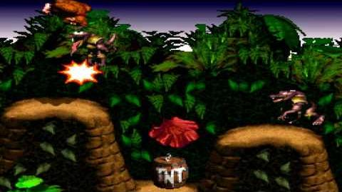 Donkey Kong Country (SNES) - Kongo Jungle - Barrel Cannon Canyon