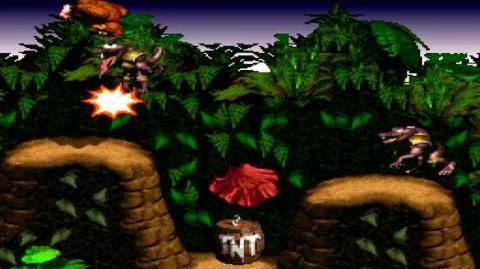 Donkey Kong Country (SNES) - Kongo Jungle - Barrel Cannon Canyon