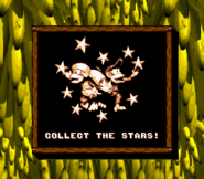 Collect the Stars (Donkey Kong Land 2)